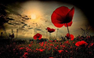 Remembrance Sunday.jpg