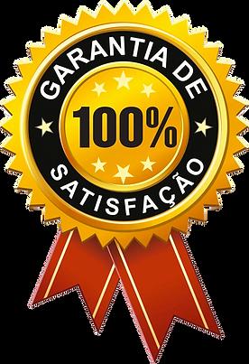 Garantia de Logotipo.png