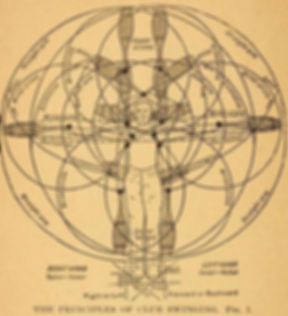 Club complex diagram.jpg