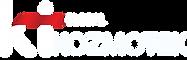 kt global beyaz logo kırmızı amblem.png