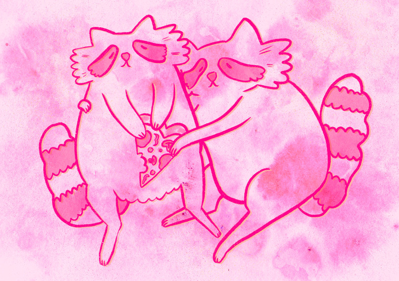 Valentines Racoons