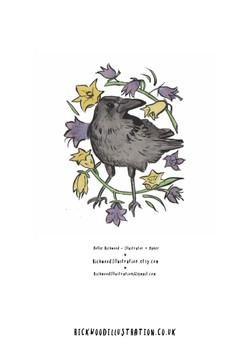 Hollie Rickwood Illustration Portfolio_P