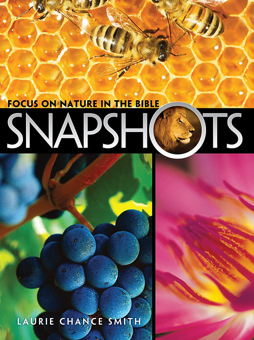 Snapshots: Focus on Nature in the Bible