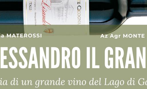 DON LISANDER, storia di una grande vino sul lago di garda