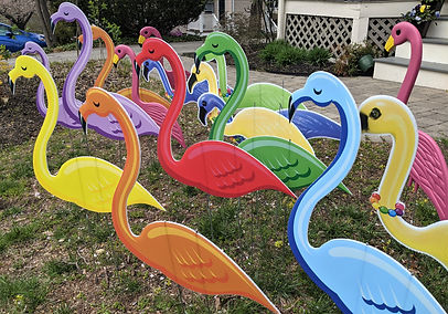 Flamingo 1 (2).jpg