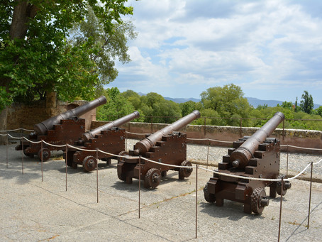 "The ""Cannons"" of Dordt"