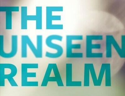 The Unseen Realm: My Two Cents