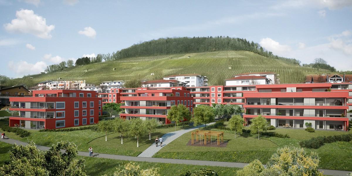 WÜB Riedholzblick