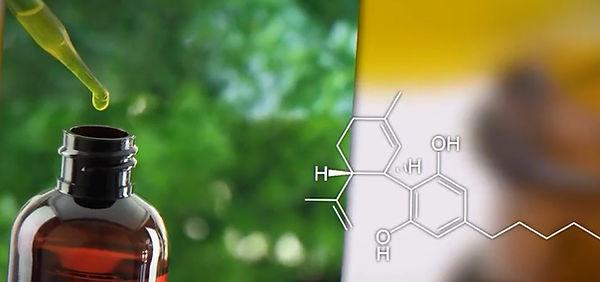 масло каннабиса2.jpg