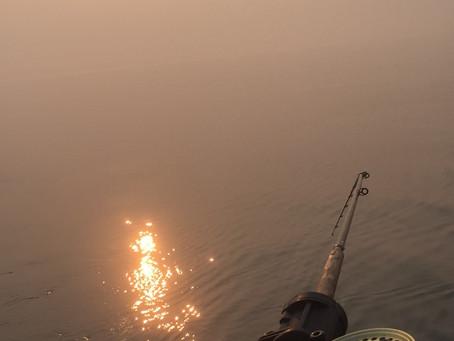 Mid Summer Fishing Report