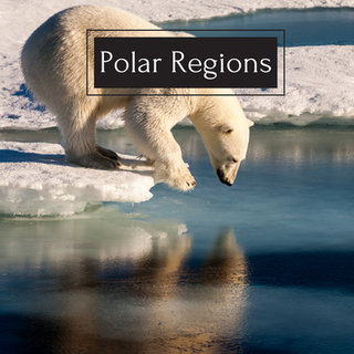 Polar Regions.png