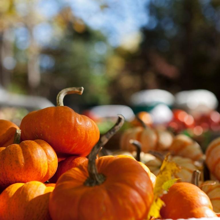 October Spooky Wreath Making