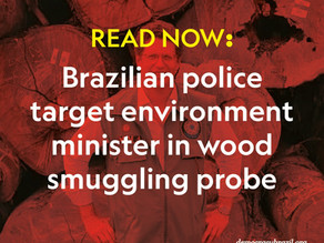Brazil environment minister targeted in wood-smuggling probe