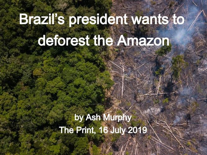 AmazonForest_ThePrint_16July2019_edited.