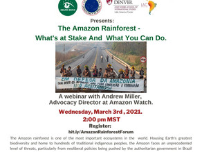 The Amazon Rainforest - What's at stake and What can you do