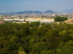 Rio F1 racetrack plans add fuel to Brazil deforestation row