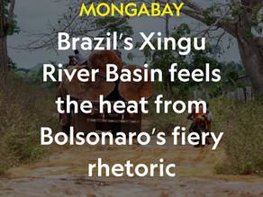 Brazil's Xingu River Basin feels the heat from Bolsonaro's fiery rhetoric