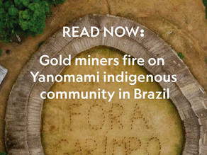 Gold miners fire on Yanomami indigenous community in Brazil