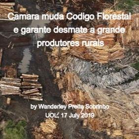 uol_18july2019_deforestation_edited.jpg