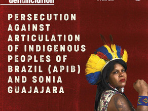 The USNDB stands with APIB and Sonia Guajajara