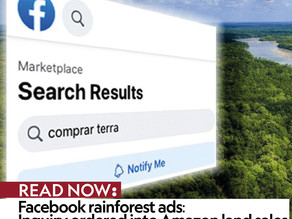 Facebook rainforest ads: Inquiry ordered into Amazon land sales