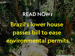 Brazil's lower house passes bill to ease environmental permits