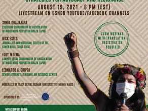 Indigenous Land Rights in Brazil: Strategies for Advocacy and Resistance