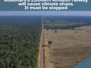 Bolsonaro's 1,000km Amazon railway will cause climate chaos. It must be stopped