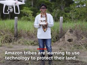 Brazil's Bolsonaro rejects Biden's offer of $20 billion to protect the Amazon