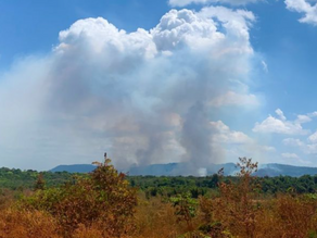 Amazon: In the cross-hairs of coronavirus and forest fires