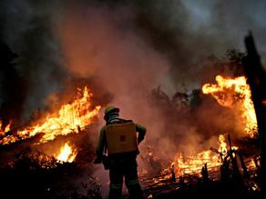 Brazil's Amazon fires worsen in September, threaten virgin forests