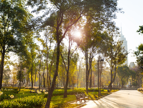 The Best & Most Beautiful Parks of Mexico City!