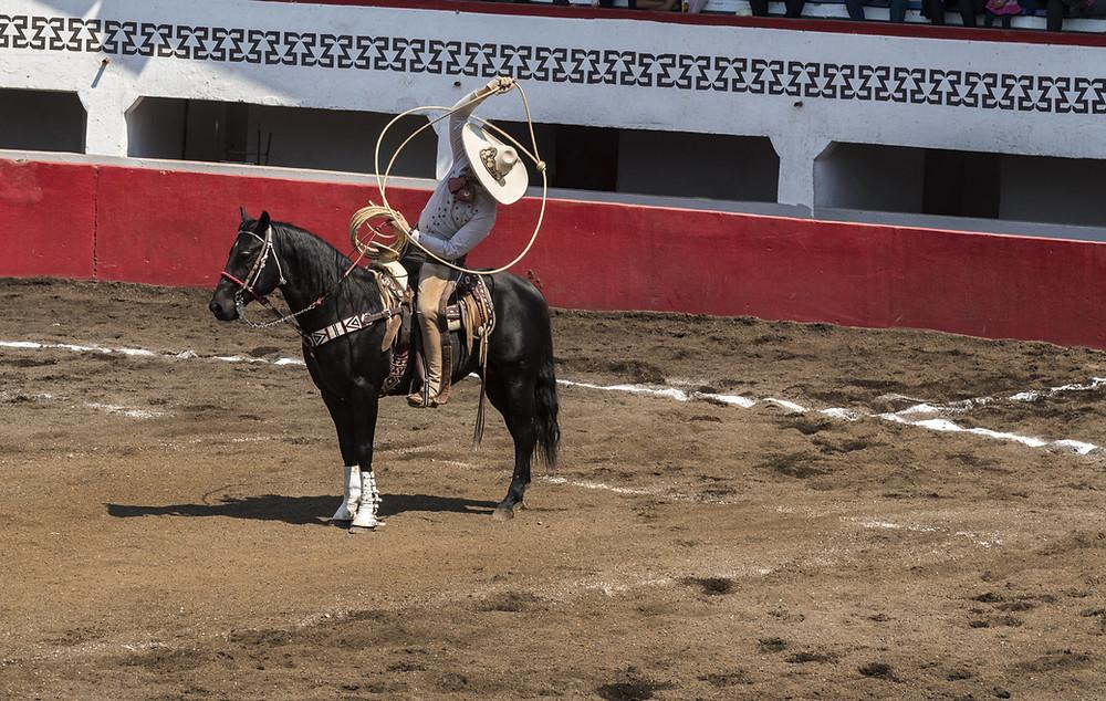 Mexican Cowboy