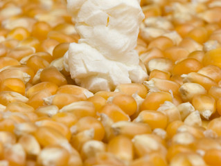 Kernel leads to pop!