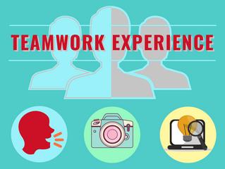 Teamwork Experience… cioé?