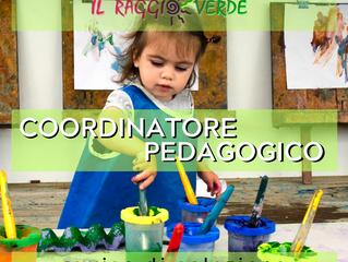 Coordinatore Pedagogico - avviso di selezione
