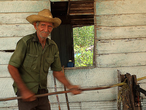 Habitant de Trinidad, canne à sucre, Cuba © niesim