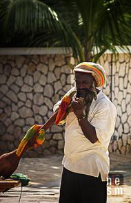 Sculpteur, Montego Bay, Jamaïque © niesim