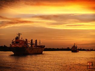 Bateaux Nouvelle-Orléan, Louisiane, Étas-Unis © niesim