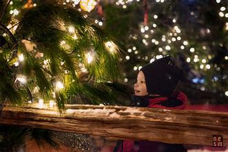 La féérie d'hiver ! Québec, Annie de niesim ©
