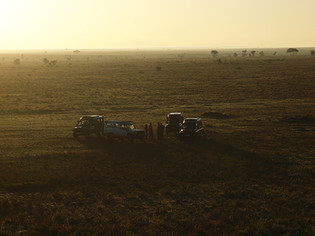 Levé du jour en Tanzanie, Afrique © niesim
