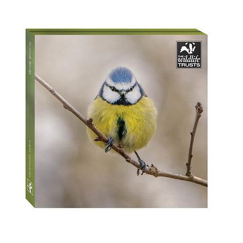 British Wildlife Wallet (8 pack)