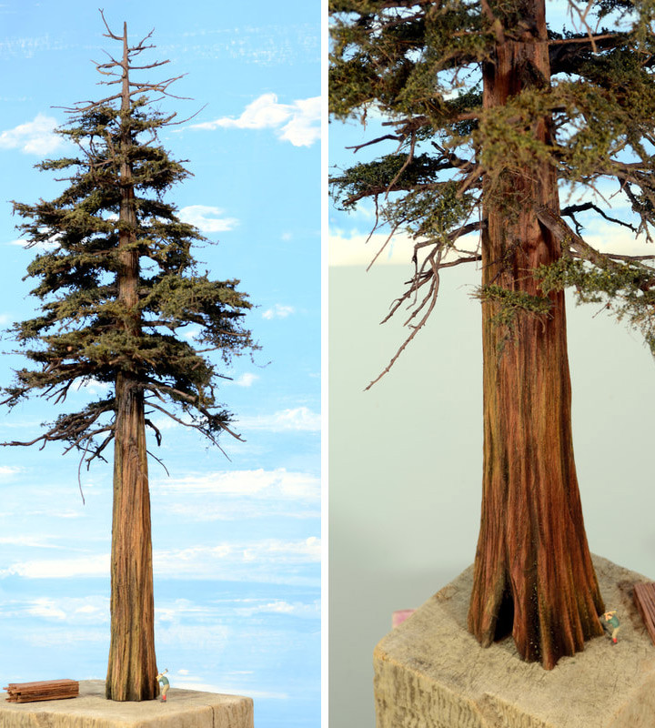 Redwood model trees