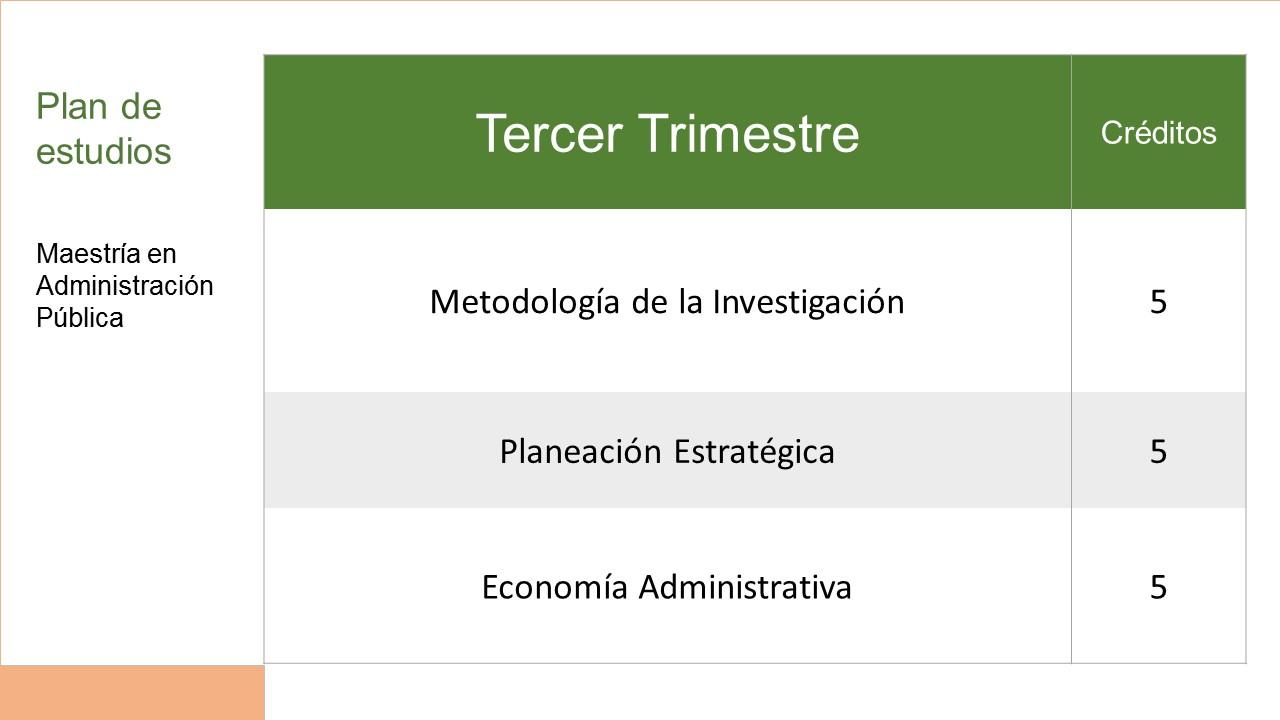 3r Trimestre