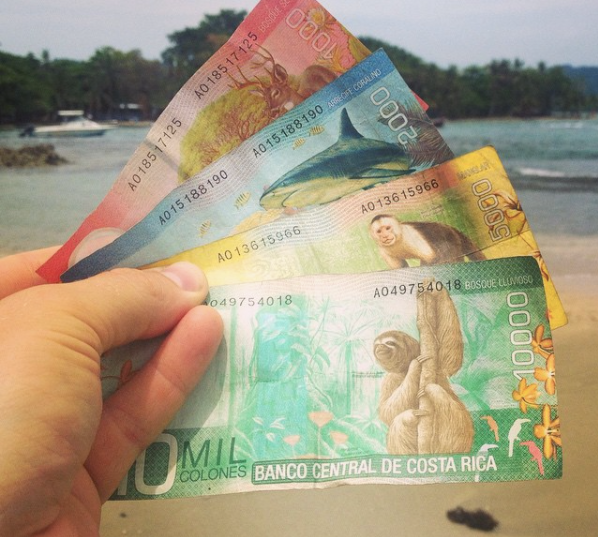 The colorful colones money of costa rica (Photo by John Early)
