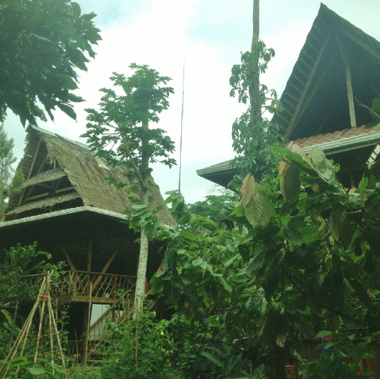 The rooftops of Punta Mona Eco Center in the jungles of Costa Rica