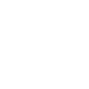TVS_white logo icon.png