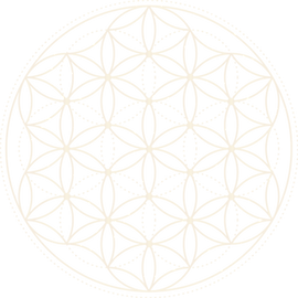 TVS_Flower of Life.png