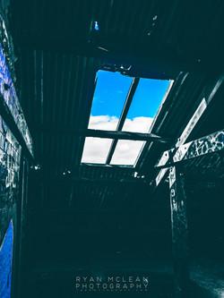 Bird_House-19
