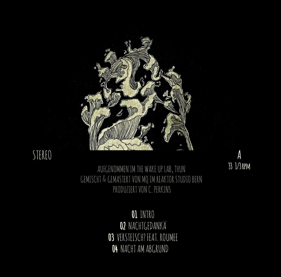 Vinyl_Cover_Back_text.jpg